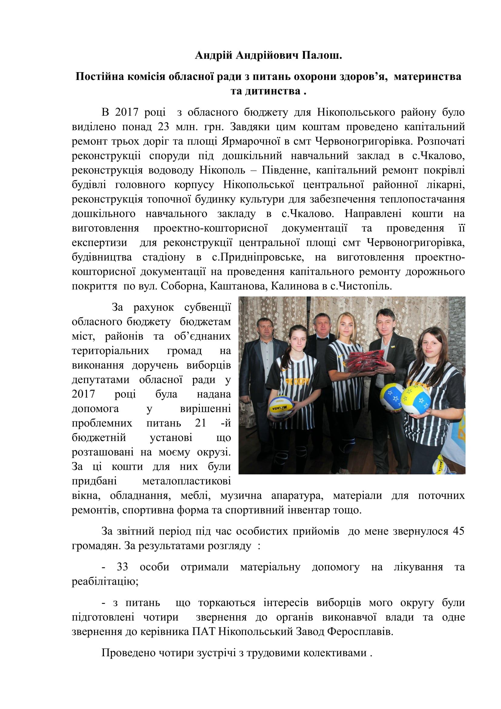 звіт за 2017 рік Палош-1